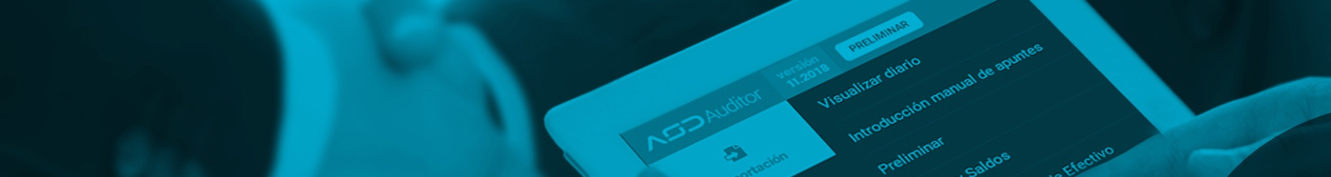 auditing-software-distributor